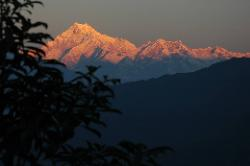 Kangchenjunga in the early morning, seen from Tashi viewpoint in Gangtok